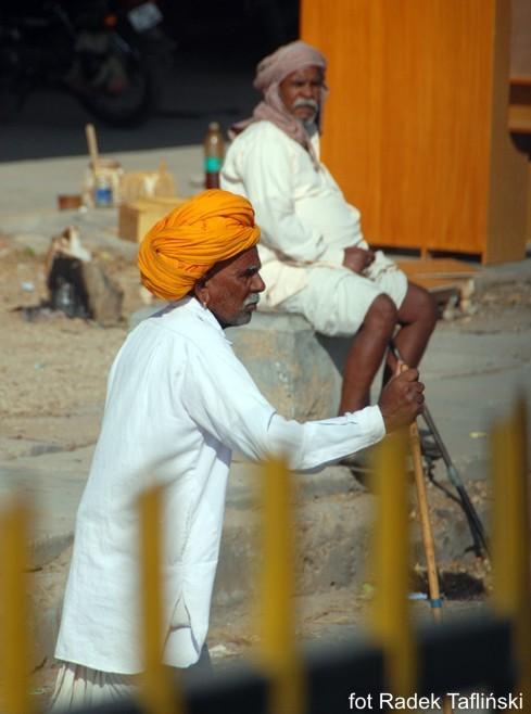 Wycieczka wRadzastanie zsafari na wielbłądach