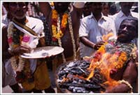 tamil nadu festiwal