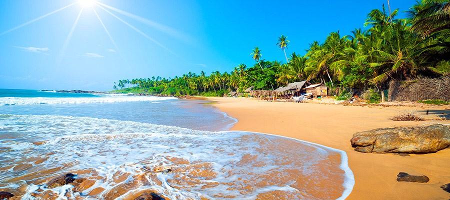 Sri Lanka wycieczki grupowe Glob Net